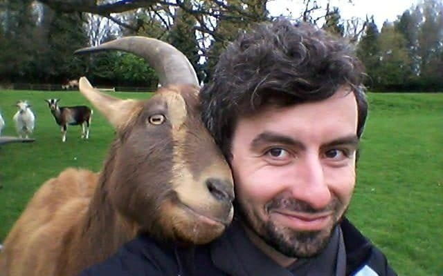 Goats are as loving and clever as dogs, say smitten scientists