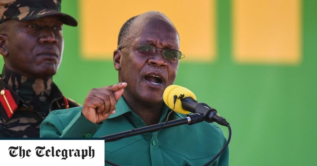 Tanzania's President Magufuli re-elected amid 'serious doubts' about vote credibility