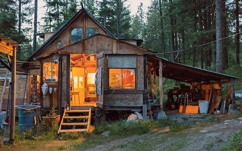 Fear, beauty, break-ups and big cats – how 12 months in a remote log cabin changed my life