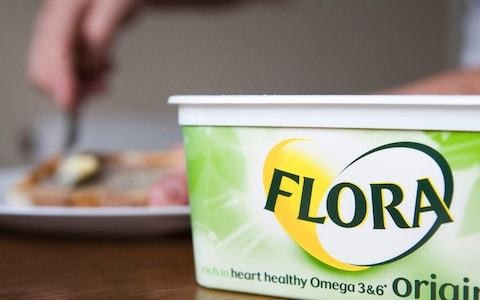 Owner of Flora in talks to gobble up vegan cheese maker Violife for €500m