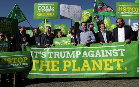 German Greens look to ban all industrial farming