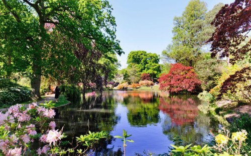 In pictures: the best gardens to visit this spring