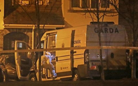 Three children found dead at house in Dublin