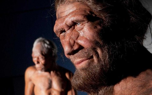 Neanderthals were capable of 'turbo breathing', according to new study of their facial features
