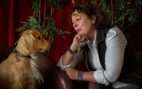 Don't train your dog to sit - teach it life skills, pet mindfulness coach says