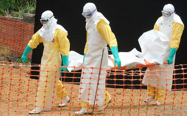 World Bank rings alarm over £20bn worst-case Ebola scenario