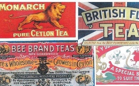 'Tea leads to prostitution': amazing facts and legends about tea