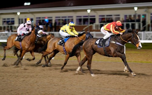 Marlborough racing tips for Thursday, January 30