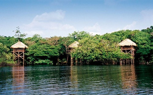 Amazon rainforest retreats: The Fab Five