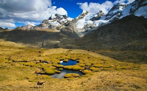 The essential road trips and rural rambles in Peru's undiscovered north