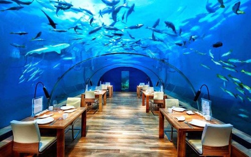 The world's most incredible underwater restaurants