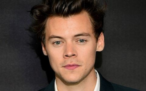 Harry Styles forced to deny giving stalker money to have 'fun' in hotel room