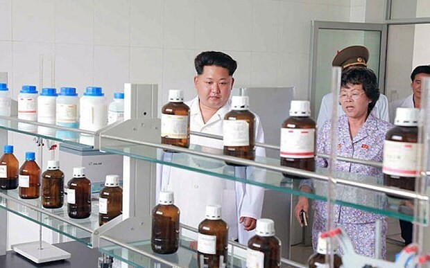Kim Jong-un pesticide facility 'may double as weapon factory'