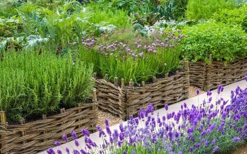 How to design a productive garden