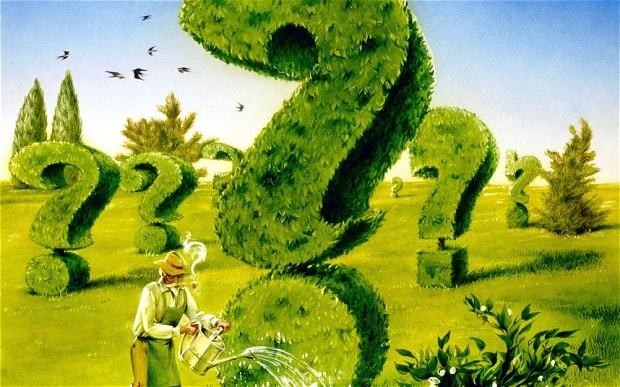 The great gardening quiz
