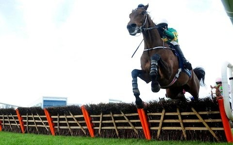 Cheltenham 2019 equine deaths rises to three but overall safety record improves on last year