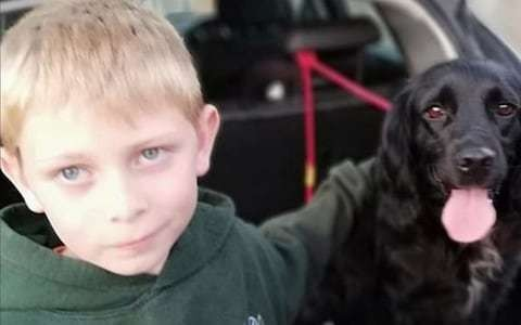 Boy whose stolen dog captured nation's heart is finally reunited with the pooch after it turns up six years later