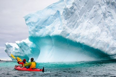 The ultimate cruise excursion? Kayaking in the pristine wilderness of Antarctica