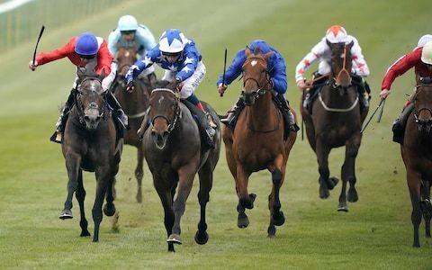 Marlborough racing tips for Wednesday, April 17