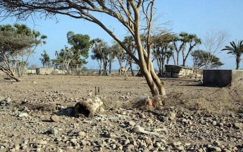 Shortages of food, water and electricity: how Djibouti has been destroyed by climate change