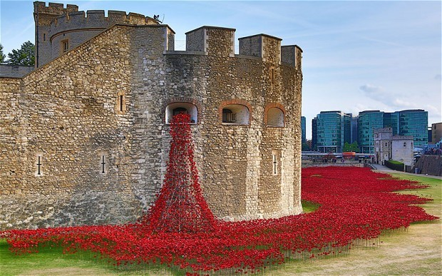 Tower of London poppy creators rule out Turner Prize nomination
