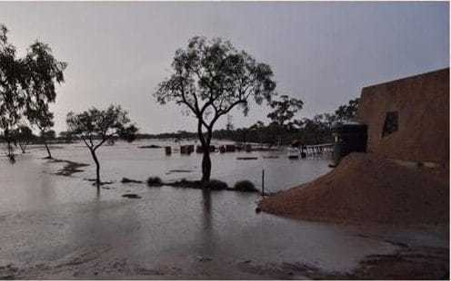Australia dinosaur museum staff trapped for eight days after floods