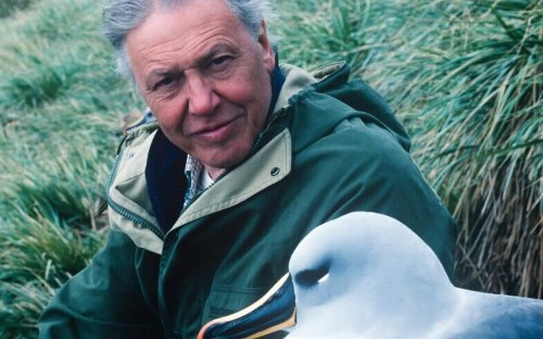 'David Attenborough nearly died on my watch,' by the man behind Planet Earth