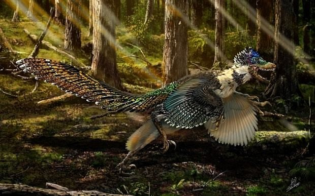 Jurassic World was wrong: velociraptors looked like this