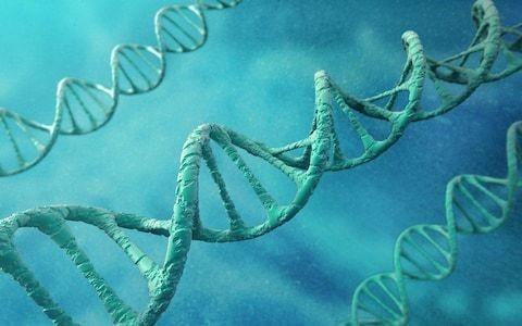 Gene injection to brain could halt Alzheimer's disease