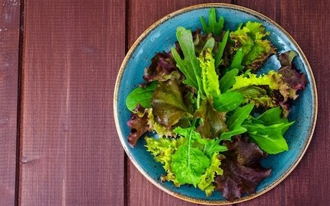 Sow now for fresh salad leaves all winter