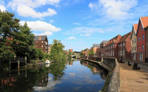 Pet flea treatment chemicals polluting Britain's streams and rivers