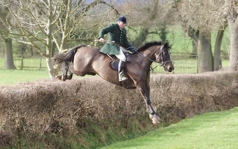 Richard Sumner, popular hard-riding joint master of the Heythrop hunt and prize-winning breeder of hounds – obituary