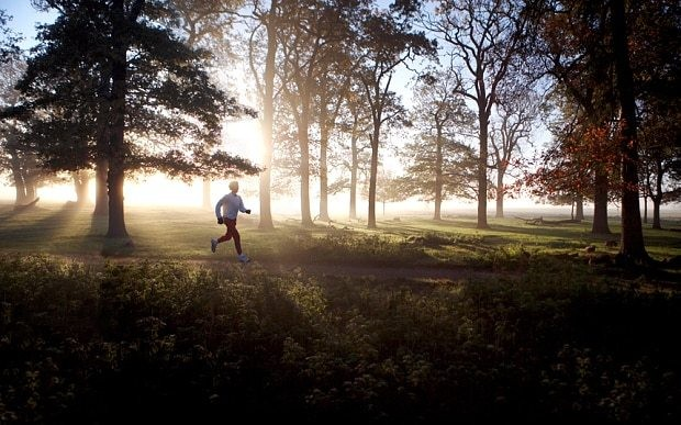 Running gives your brain a work out, say scientists