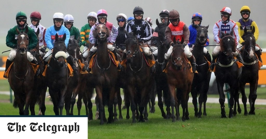 Marlborough racing tips and best bets for Wednesday, December 2