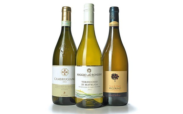 Wine tasting notes: the best whites from Marche and Abruzzo