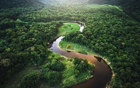 The most beautiful ships for a cruise on the Amazon