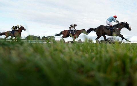 Marlborough racing tips for Saturday October 12