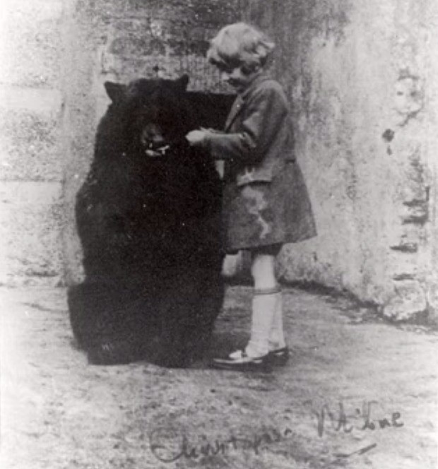 Bear who inspired Winnie the Pooh had tooth decay because 'Christopher Robin' fed it honey