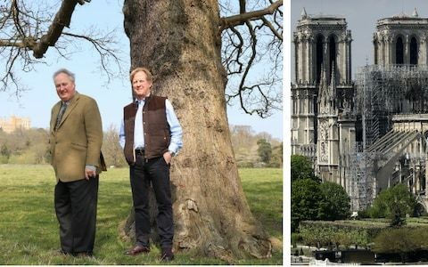 More than 100 British stately homes to donate oaks for the rebuilding of Notre-Dame
