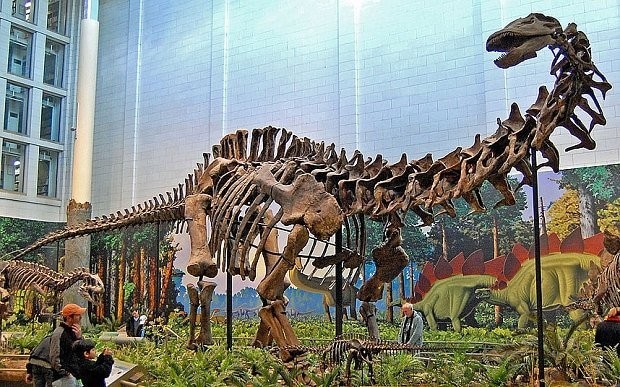 Brontosaurus raised from dead, as scientists rule dinosaur did exist