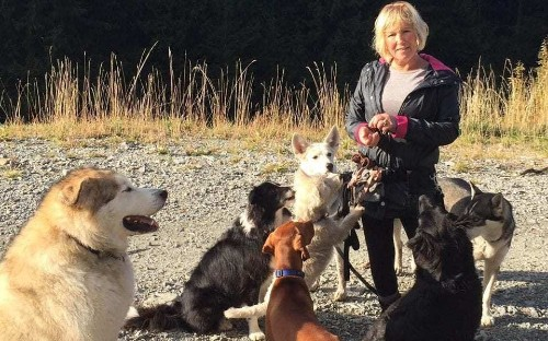 Canadian dog walker survives three days in remote bush - thanks to her three dogs