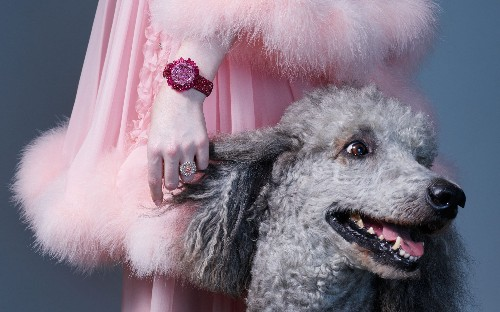 Diamond dogs: watches and jewellery with outstanding pedigree