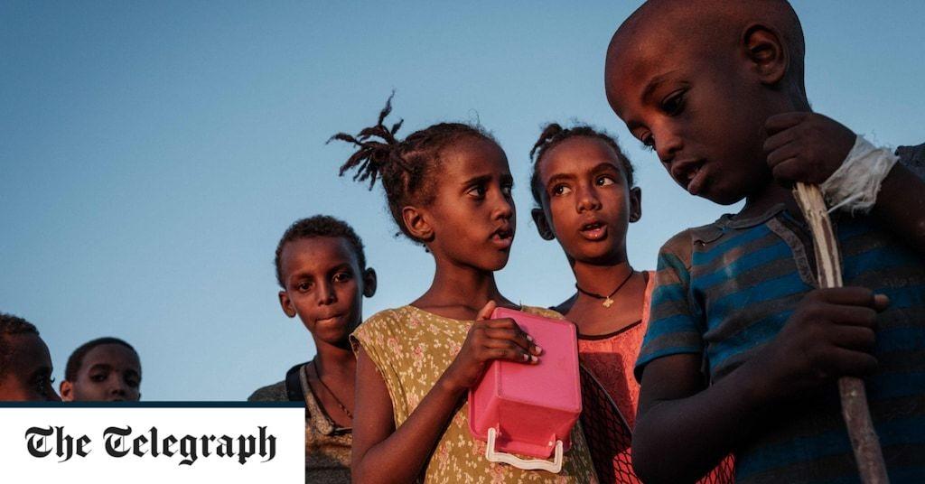 UN granted humanitarian access to Ethiopia's war-torn Tigray region