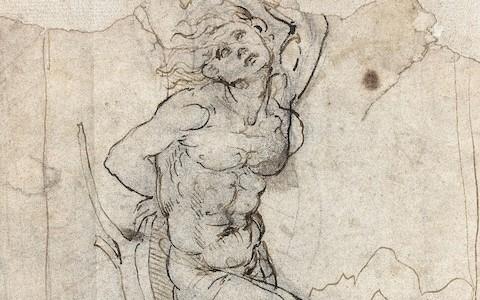 Retired French doctor is unwitting owner of 'lost' Leonardo da Vinci drawing worth €15 million
