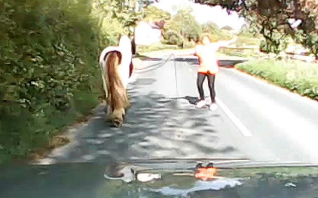 Speeding driver has near-miss while overtaking horse on Hertfordshire road