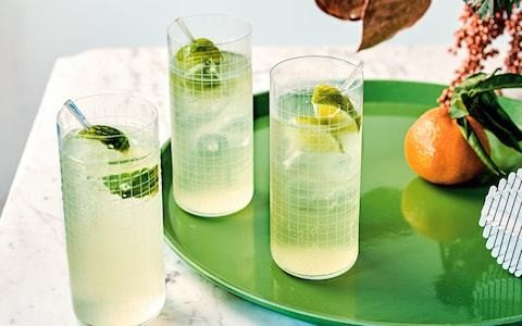 Ginger snap gin and lime cocktail recipe