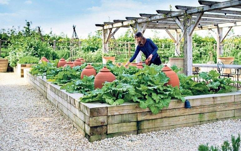 The best online tutorials, tours and courses to become a better gardener in lockdown