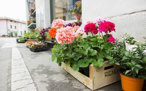 How to start and grow a successful florist business