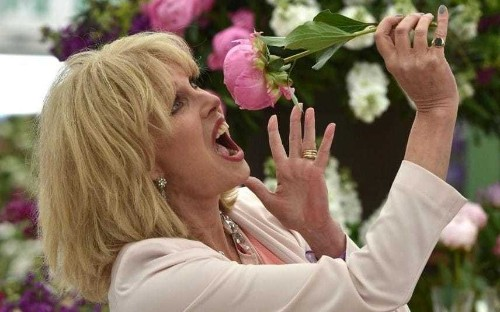 10,823 glasses of champagne: Chelsea Flower Show by numbers