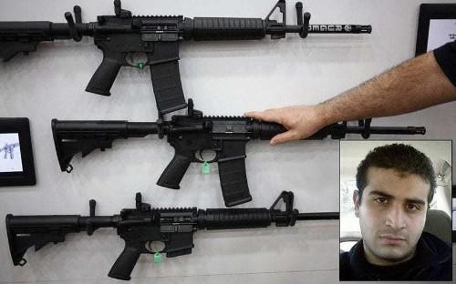 Assault rifle used in Florida shooting drives US gun control debate